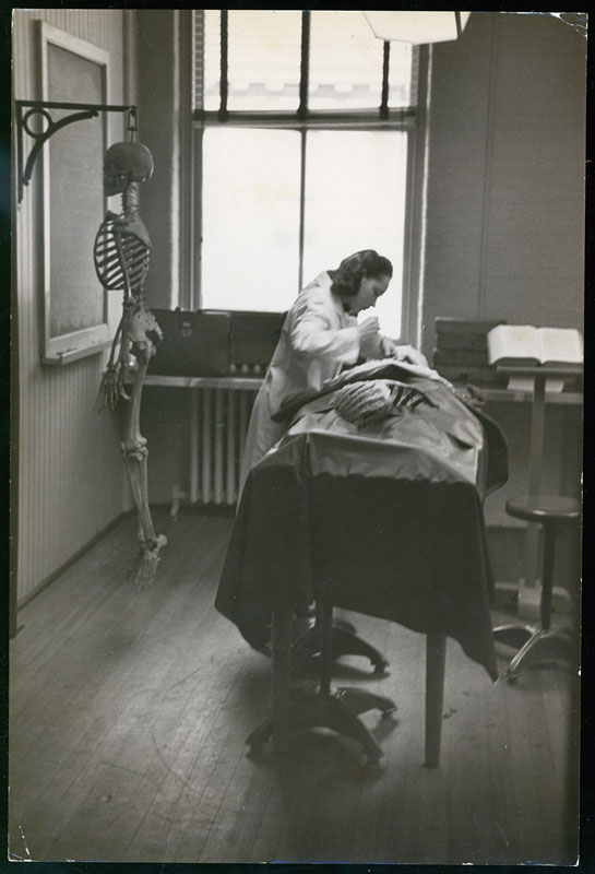 Medical student dissecting in anatomy laboratory, 1950